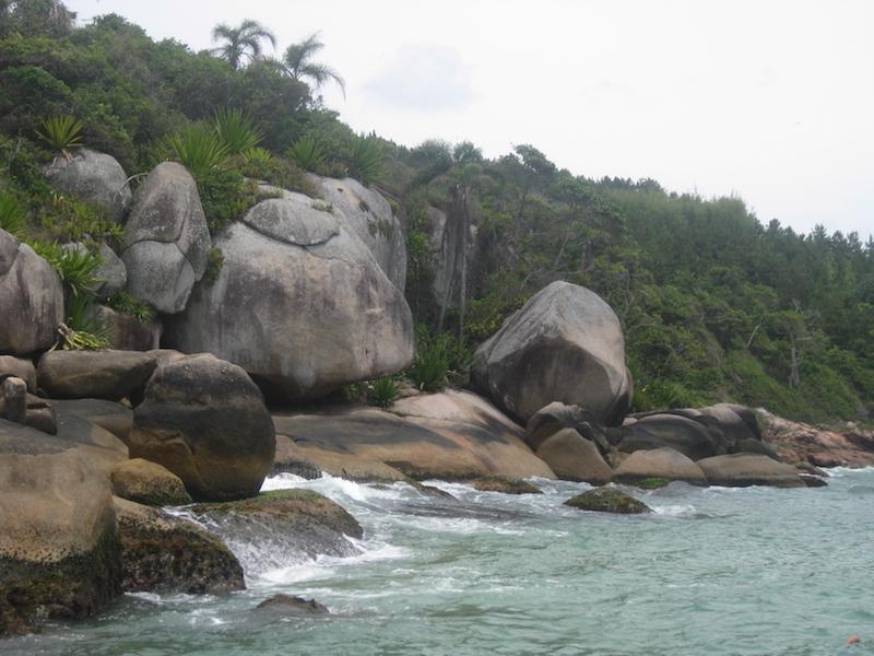 Felsen und Atlantischer Regenwald in Barra da Lagoa