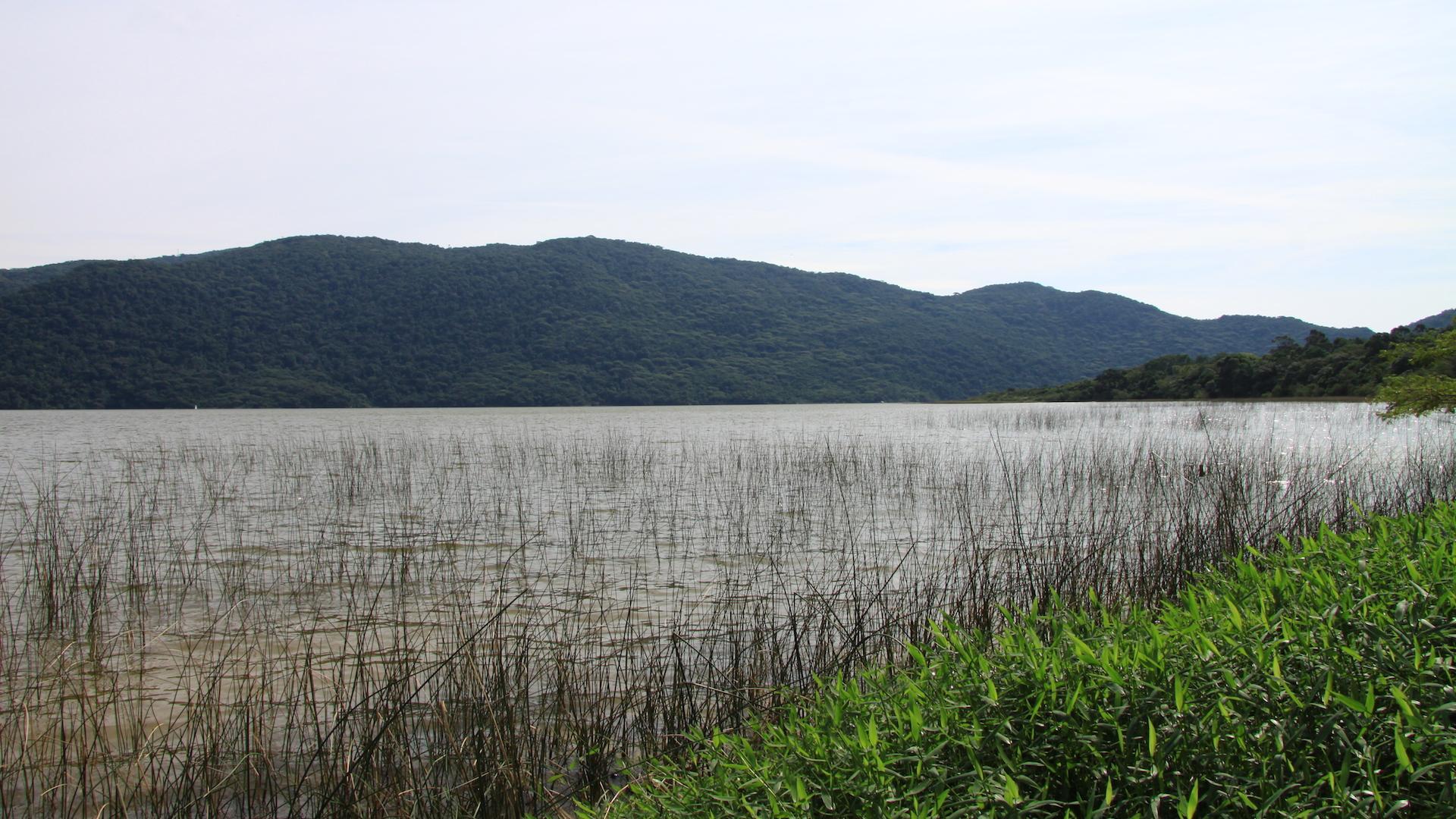 Ausblick auf die Lagoa do Peri in Florianopolis